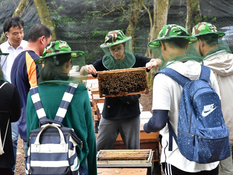 小蜜蜂教室03